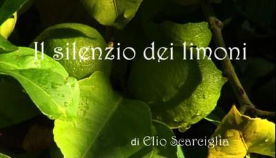 Il silenzio dei limoni